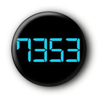 7353 Button Ansteckbutton